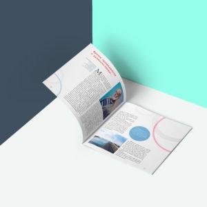 Полиграфия многостраничная, журналы